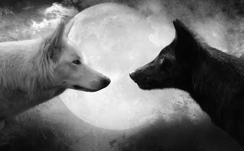 Lobo bueno, lobo malo